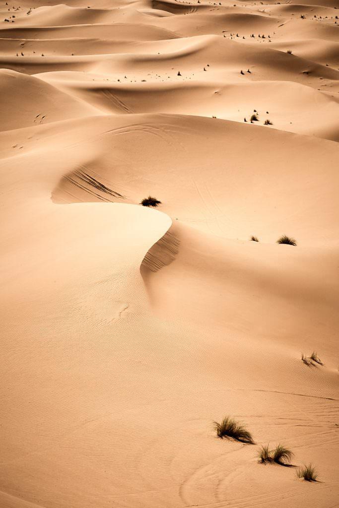 Dunes de Chégaga - Maroc