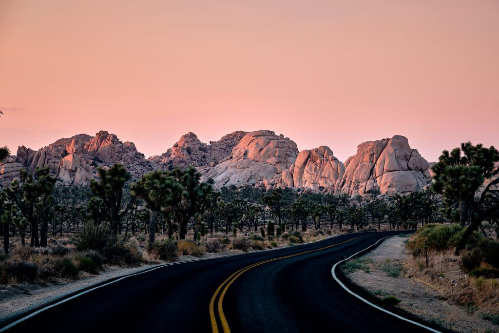 Joshua Tree National Park, CA - USA